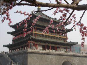Disquaires Chine